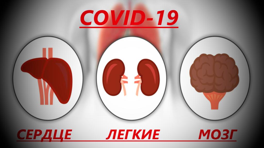 Последствия коронавируса для излечившихся: легкие, сердце, мозг